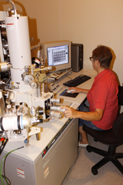 The SEM in use